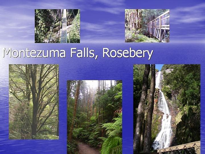 Montezuma Falls, Rosebery, Tasmania by gaylene