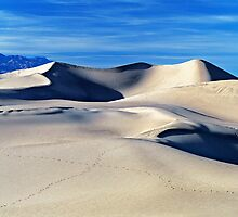 Cool Desert by Mark Ramstead