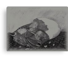Birth of a dragon Canvas Print