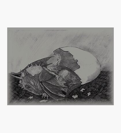 Birth of a dragon Photographic Print