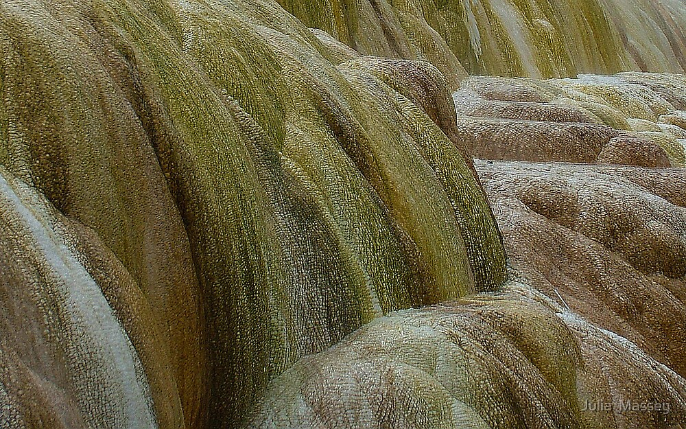 Mammoth Hotsprings by Julia  Massey