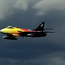 Hawker Hunter F58A Miss Demeanour by larry flewers