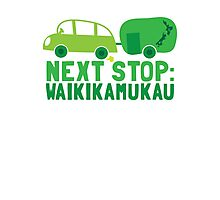 NEXT STOP: Waikikamukau funny fake Kiwi New Zealand travel destination Photographic Print