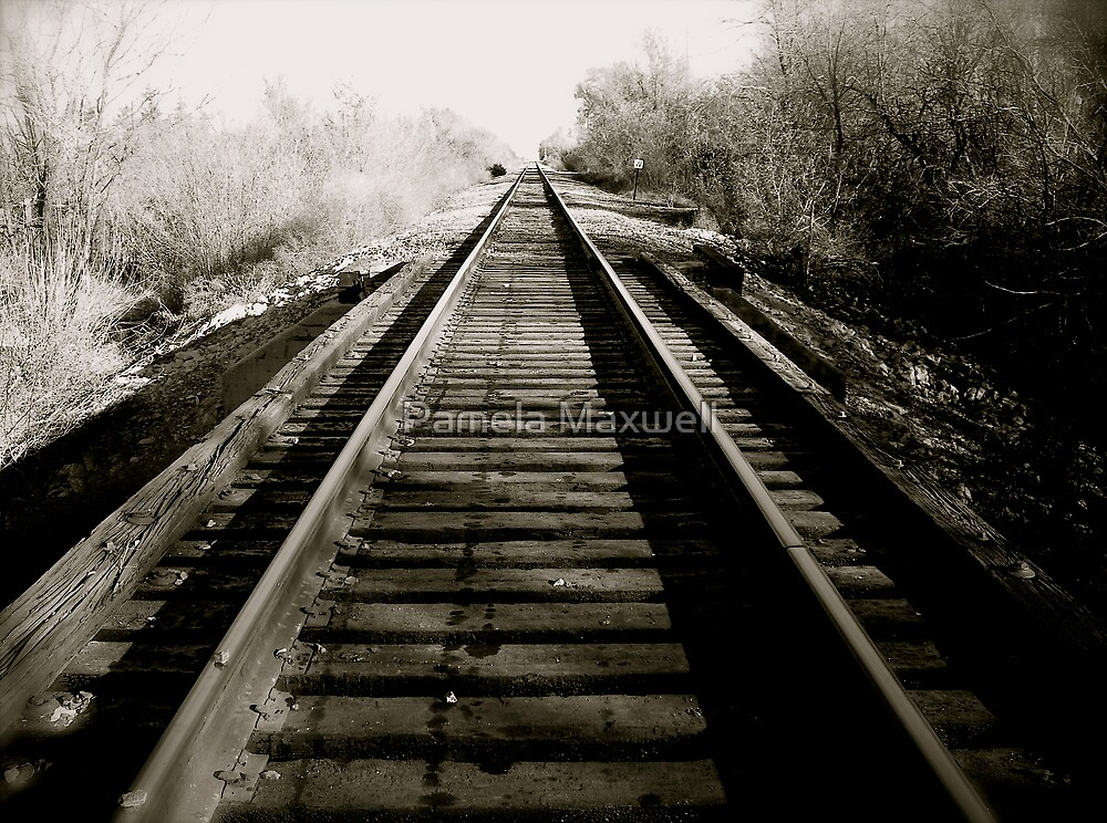Old Tracks by Pamela Maxwell