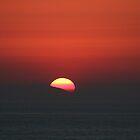 Dana Point Sunset by Laura Puglia