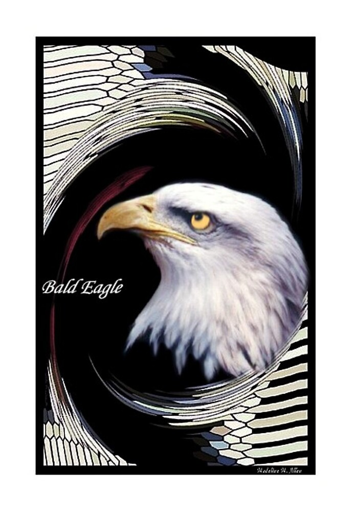 Bald Eagle    by Madeline M  Allen