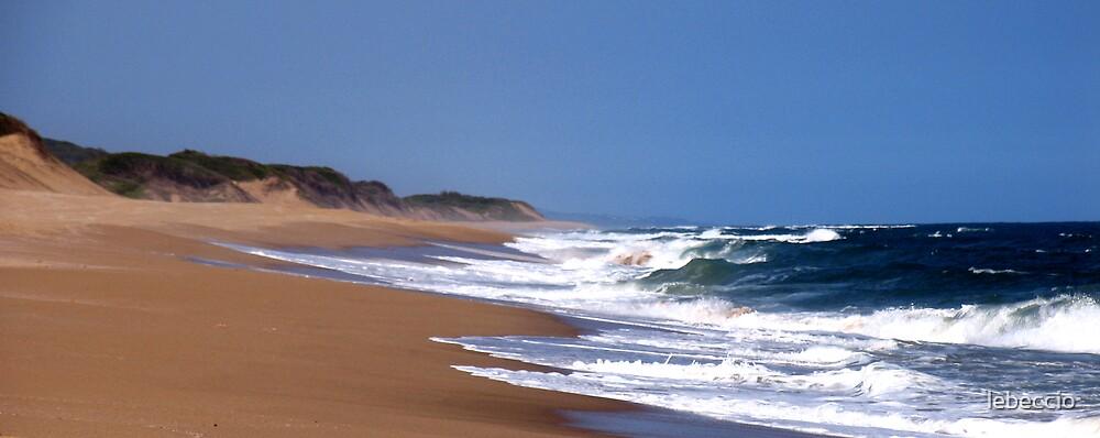 Endless beach by lebeccio