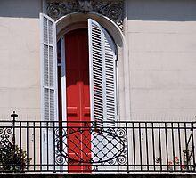 Red Door by lebeccio