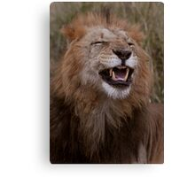 Cheese! Canvas Print