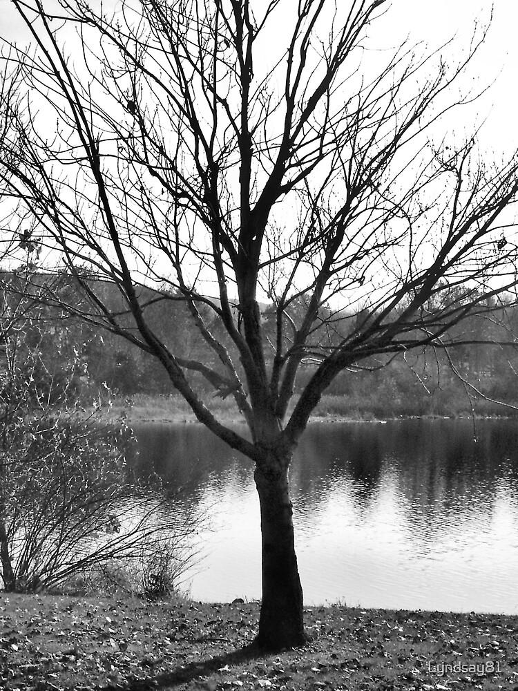 Dead Tree  by Lyndsay81