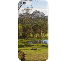 Rural Denmark iPhone Case/Skin