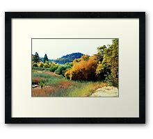 Pasturized Color Framed Print