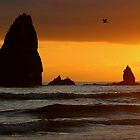 Cannon Beach ( sunset) by PRboy