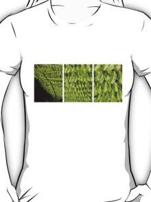 Scale4-SilverFern TEE T-Shirt