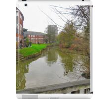RIVERSIDE PROPERTY. iPad Case/Skin