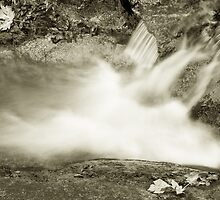 Brandy Creek-2  by SwainPhotography