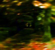 stranger by Rebecca Reynolds