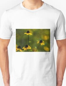 Field of Yellow Wildflowers T-Shirt