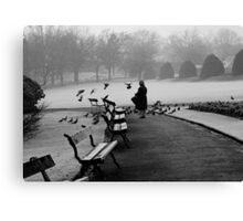 Shy woman feeding pigeons Canvas Print