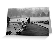 Shy woman feeding pigeons Greeting Card