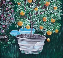 Potted Orange Tree by Alison McDonald