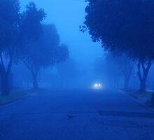 Foggy Morn by Ann  Nolan
