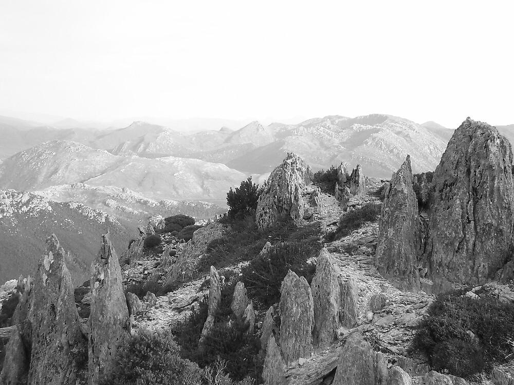 jagged rocks on Mt Read, Rosebery, Tasmania by gaylene