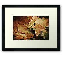 Fellowship of the leaf Framed Print