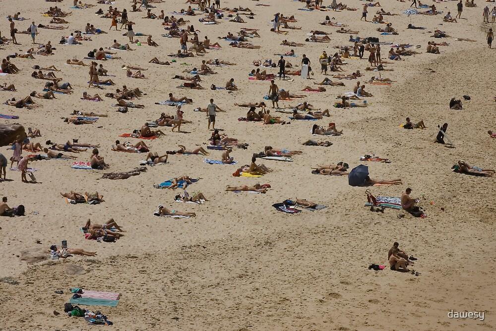 Bondi in Summer by dawesy