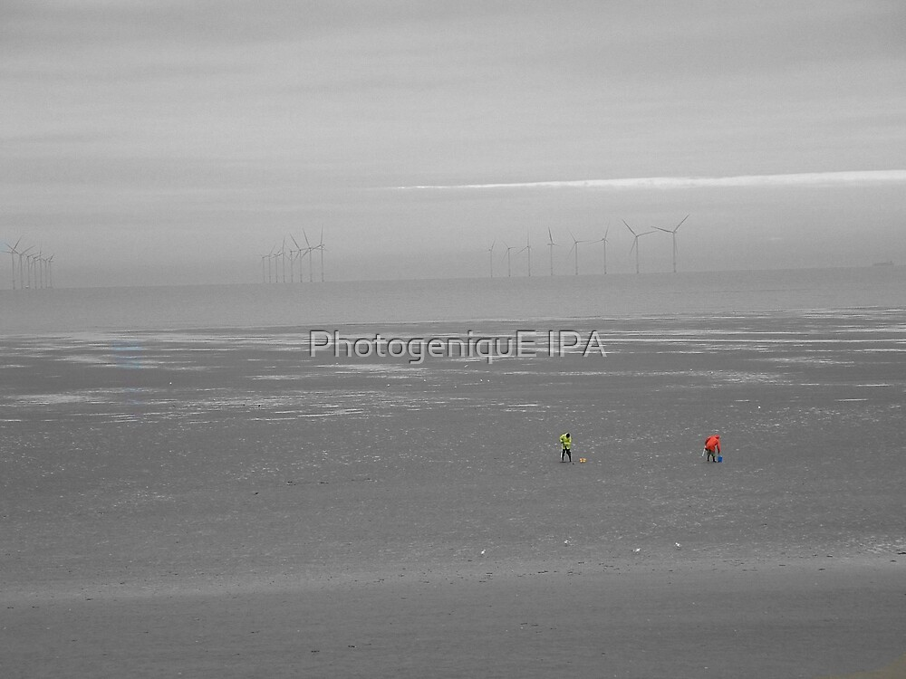 The Bait Diggers by PhotogeniquE IPA