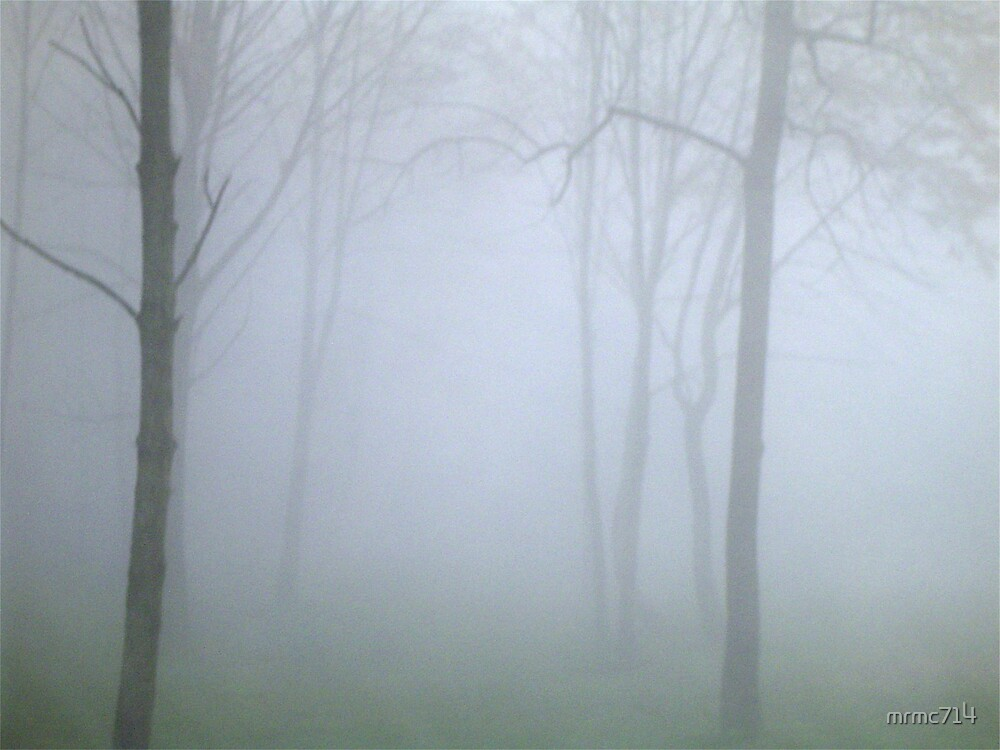 misty wood 2 by mrmc714