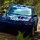 140 kph through the forest...looks so easy by Shakedown