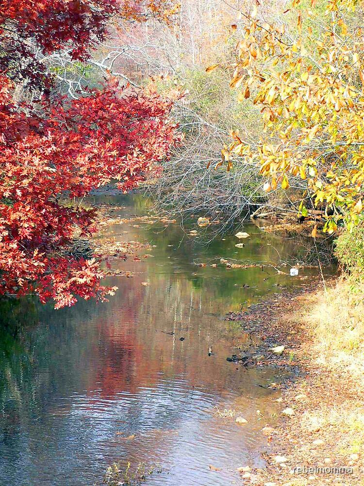 The creek by rebelmomma