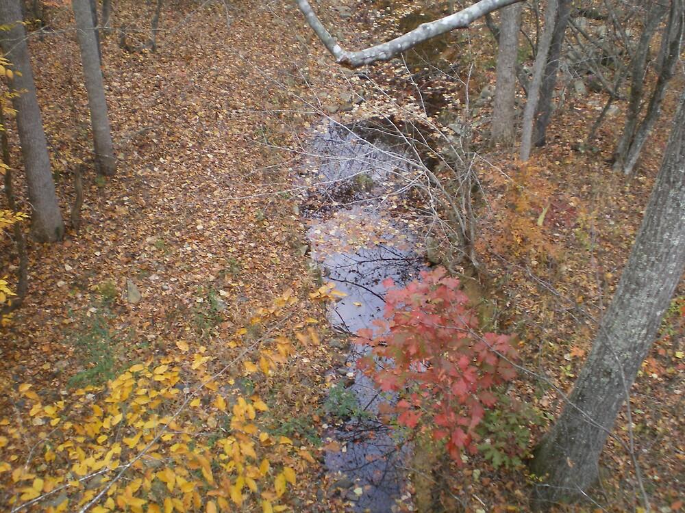 The creek by stephenmakesart