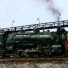 Steam Locomotive by Susan Savad