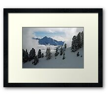 How nature presents itself Framed Print