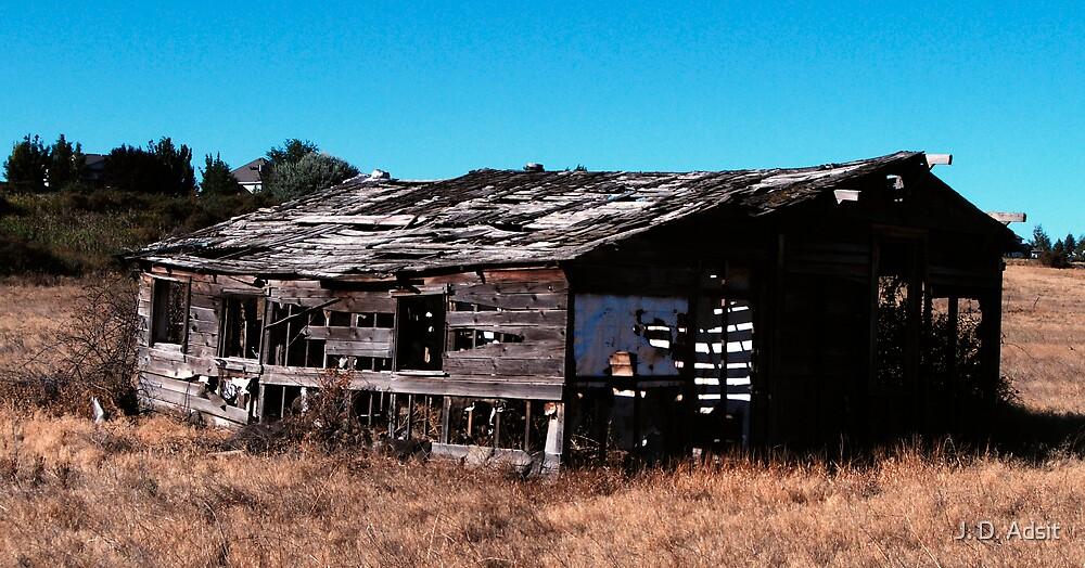Abandoned long Ago by J. D. Adsit