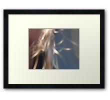 Slow Grind Framed Print