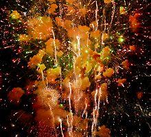 Fireworks by J. D. Adsit