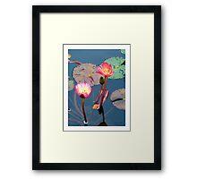 Pond Lillies Framed Print