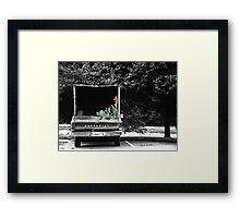 Pretty Cargo Framed Print