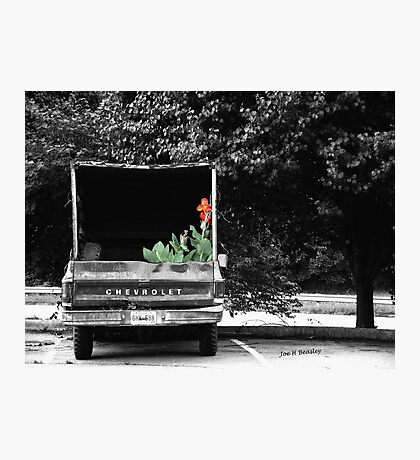 Pretty Cargo Photographic Print