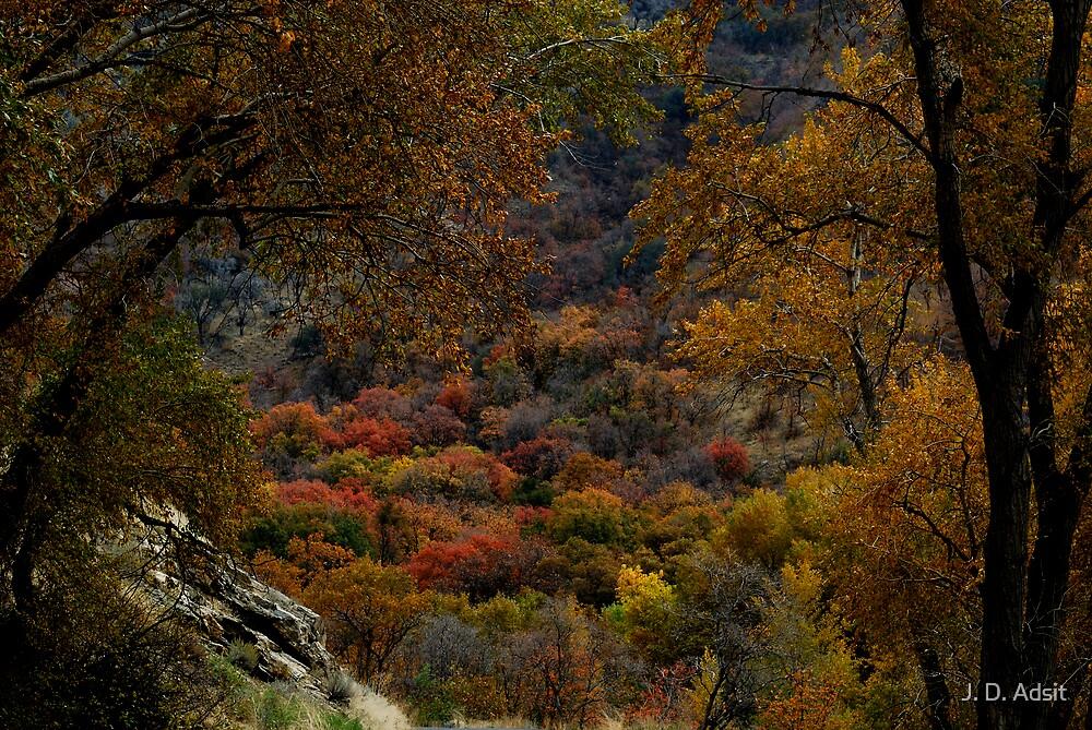 Eden in Autumn by J. D. Adsit