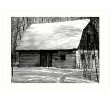 black and white snow Art Print