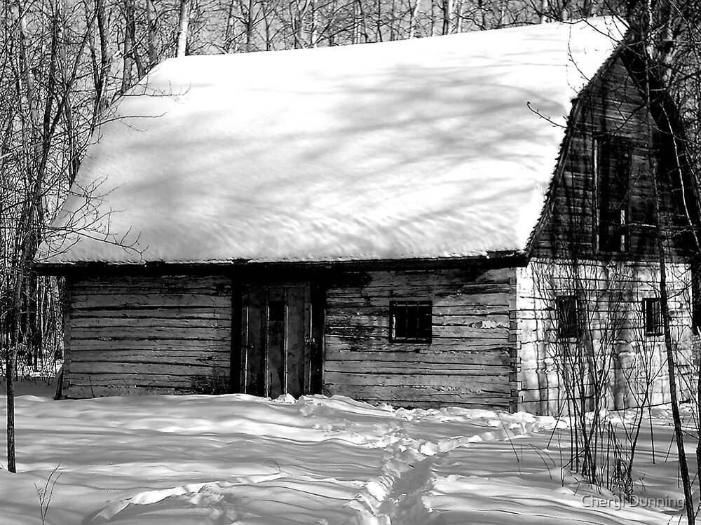 black and white snow by Cheryl Dunning