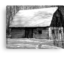 black and white snow Canvas Print