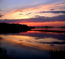 marsh sunset by Cheryl Dunning