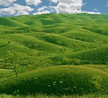 Hilly Landscape by 945ontwerp