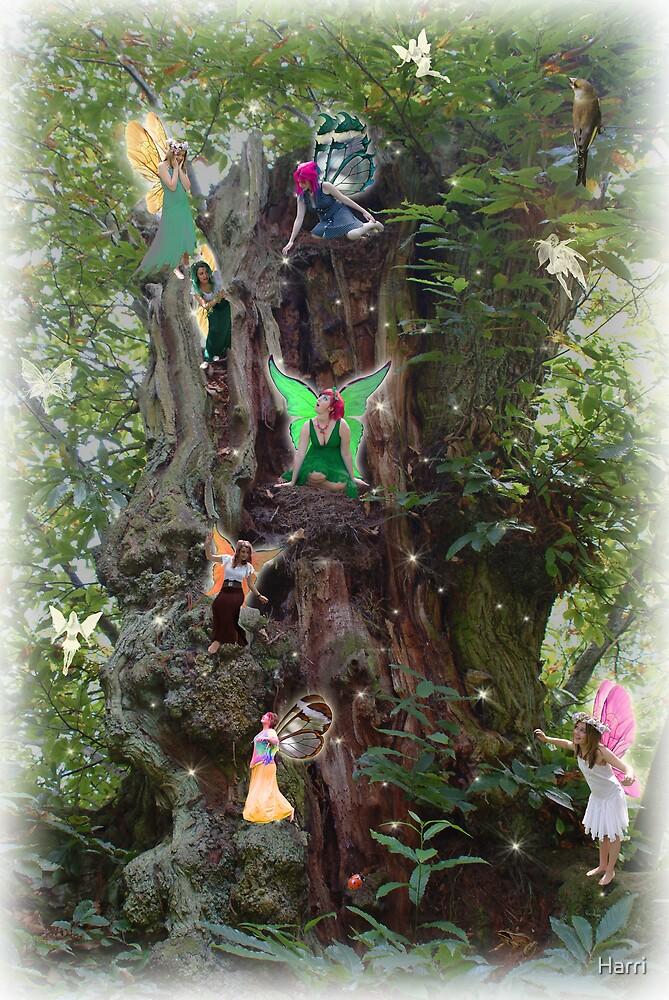 Gnarly Fairy Tree by Harri