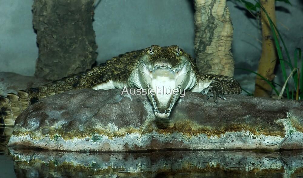 Laughing Crocodile. by Aussiebluey